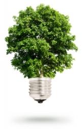 eco-friendly initiatives in lighting Ottawa